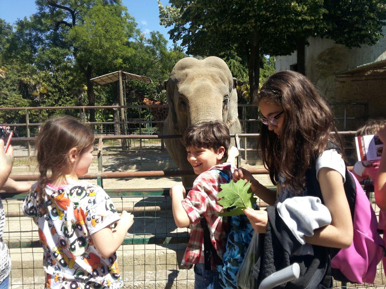 Una gita allo zoo