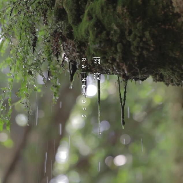 Rain.mp4