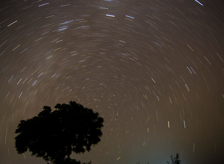 Of Cool Winds and Starry Nights