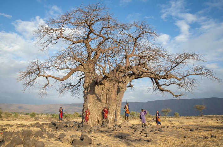 Explore Africa with the Maasai
