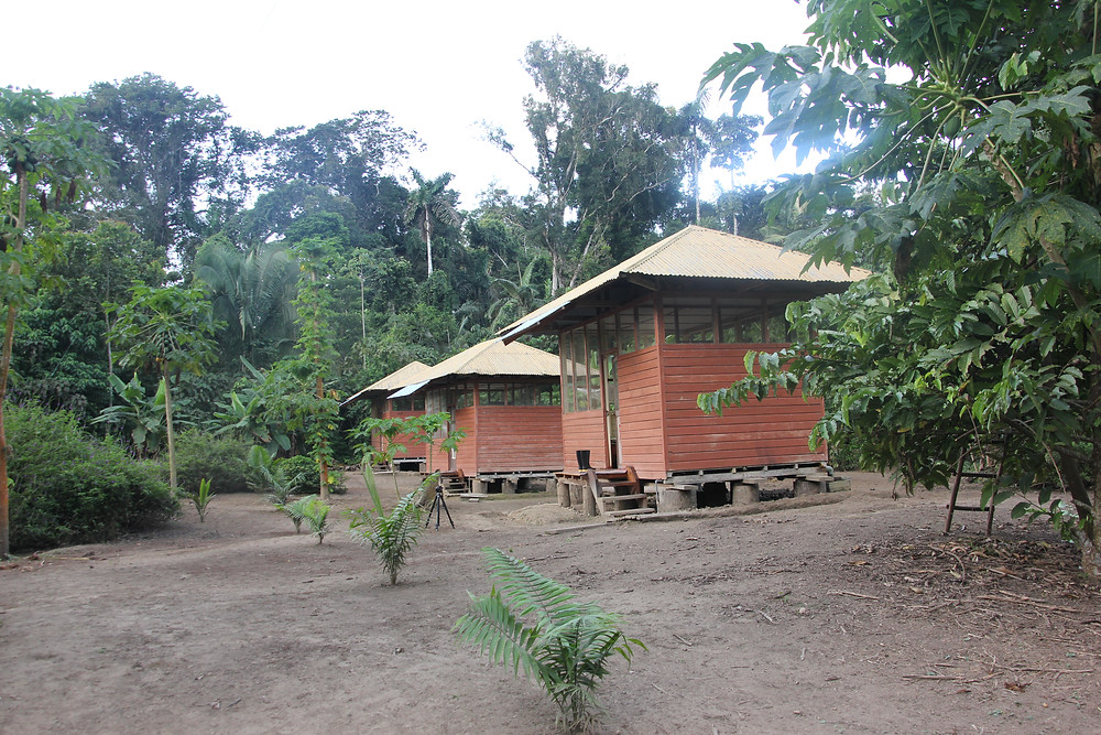 A view of the the lodge