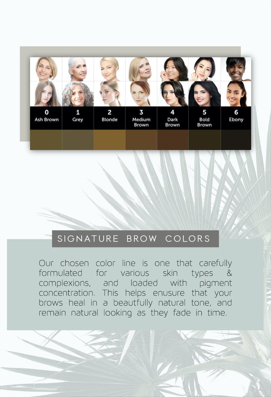 Signature Eyebrow Colors.jpg