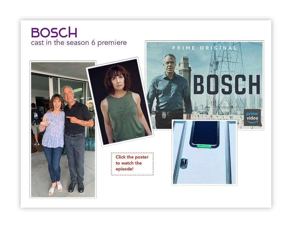Bosch Press page.jpg