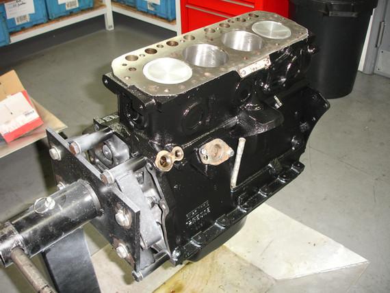 MG 1800 1.JPG