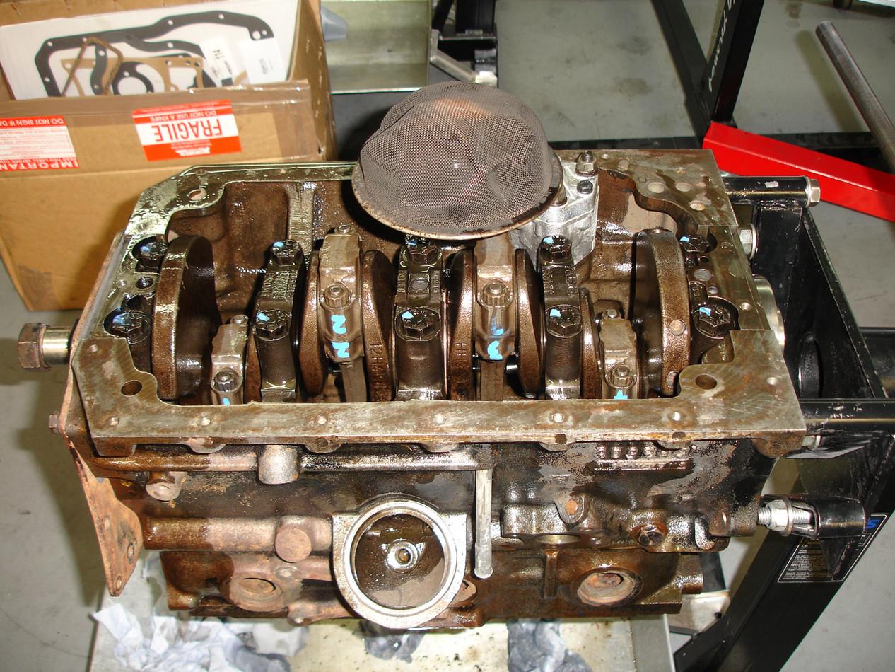 MG 1800.JPG