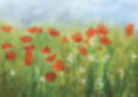 Poppies Acrylic 50 x 70 cm small.jpg