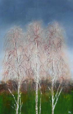 Three winter birches