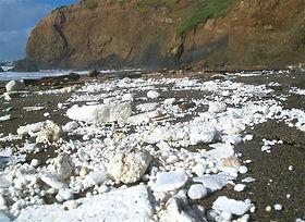 Styrofoam_beach_City_of_San_Juan_Capistr