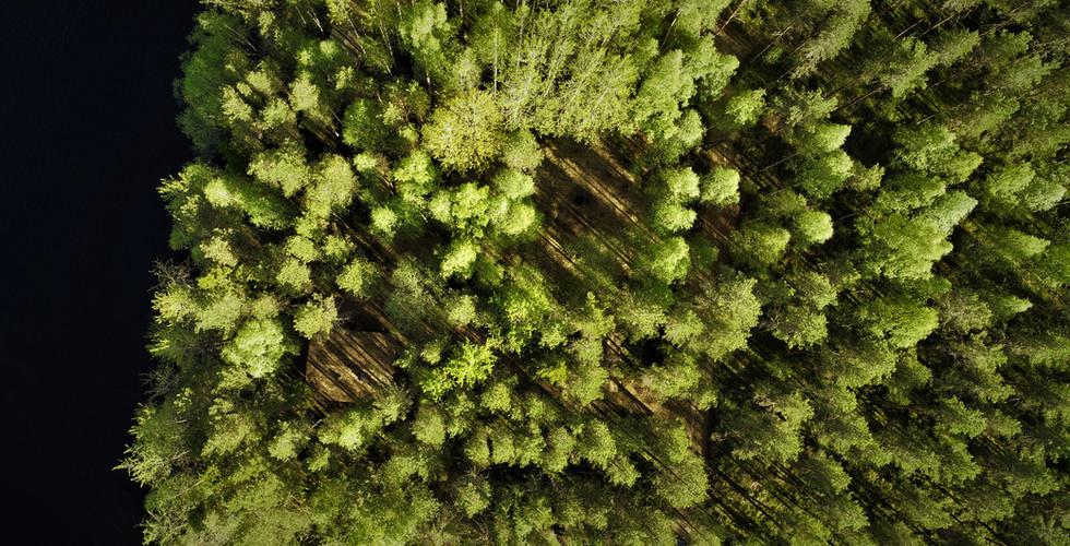 Drone valokuvaukset