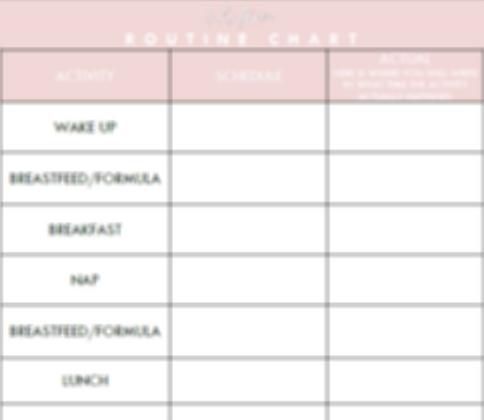 Routine Chart | 1-2 Naps + FREE Birth Plan