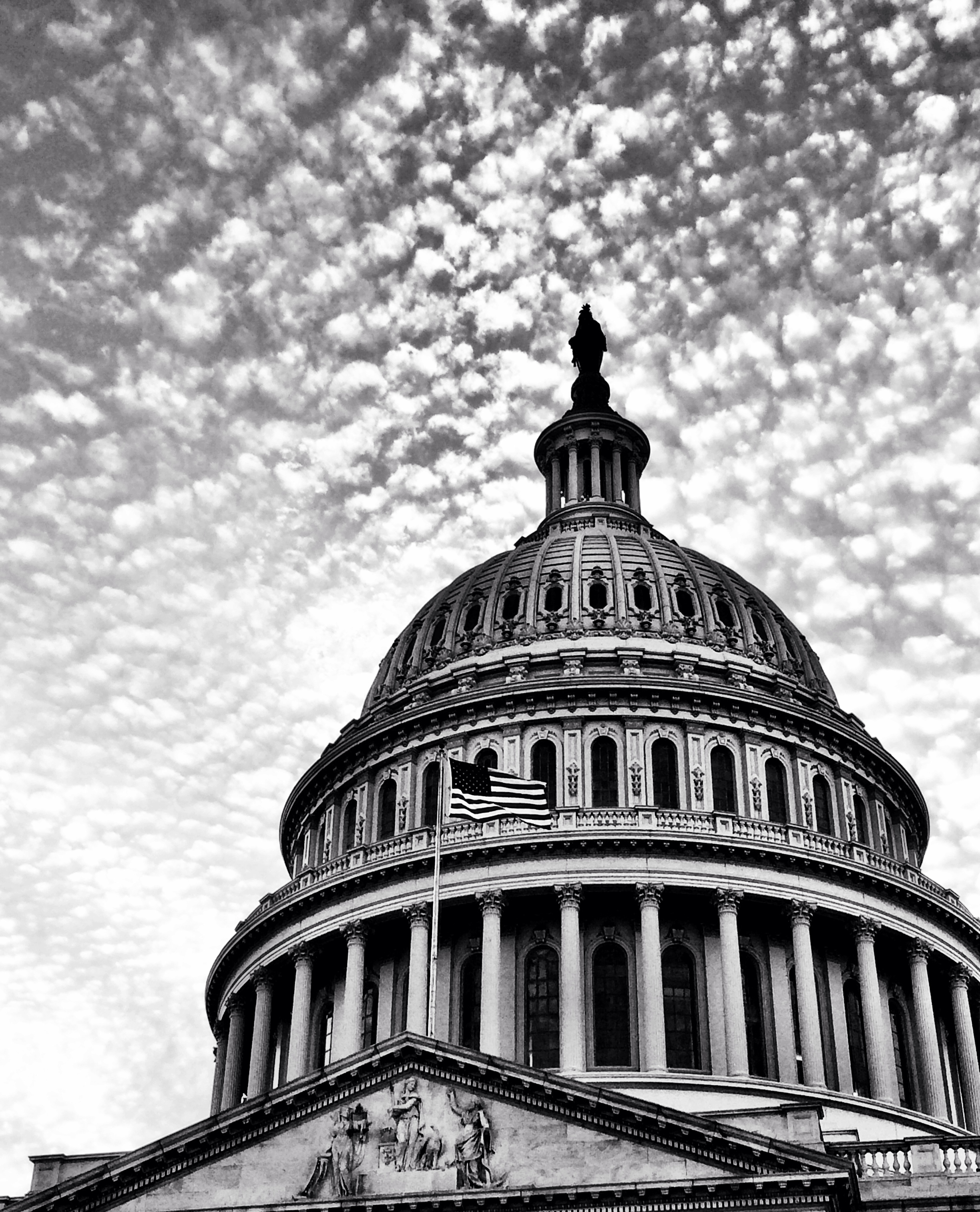 Capitol BW 2nd Crop