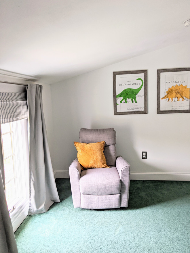Sam's Dinosaur Room Makeover (Before and After)