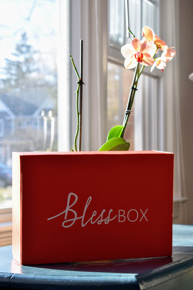 Spring Bless Box: The One with the Pearl Necklace