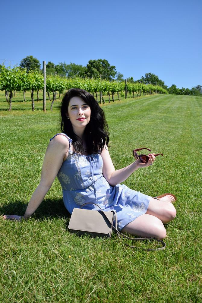 Pippin Hill Farm: A Virginia Vineyard