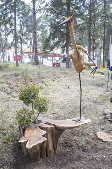 חסידה אומנות סביבתית.jpg