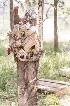 בית על העץ תרנגולת.jpg