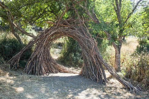 גשר שער עצים קלועים.jpg