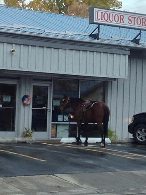 A Trip to the Liquor Store in Salmon
