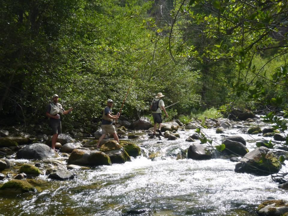 Fishing Down River