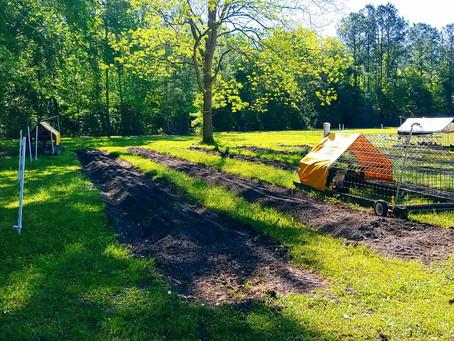 IPM integrated pest management, fertilizer and soil erosion.