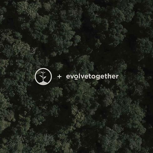 one-tree-planted-colab.jpg