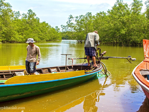 In The Beginning - The Story Of The World Famous Khao Lak Mangrove Explorers
