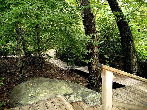 Walking Trails through Avalon