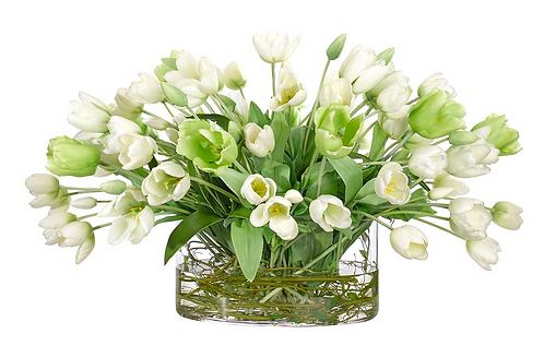 Large Tulip