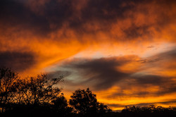 sunset-420730_1920.jpg