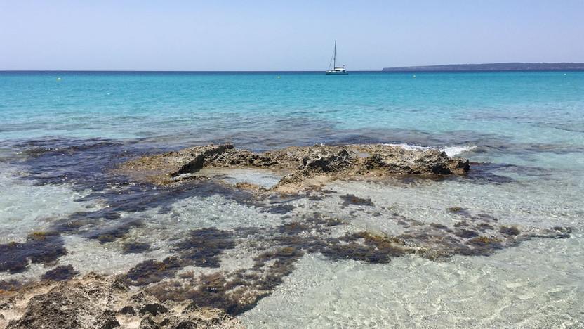 SPAGNA. Formentera: come vivere il meglio della Isla Bonita in 5 giorni