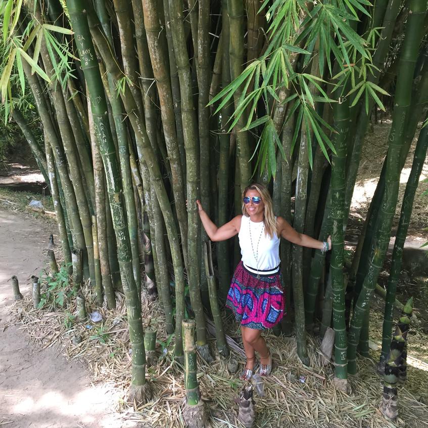 Itinerario Cuba, Foresta di Bambù