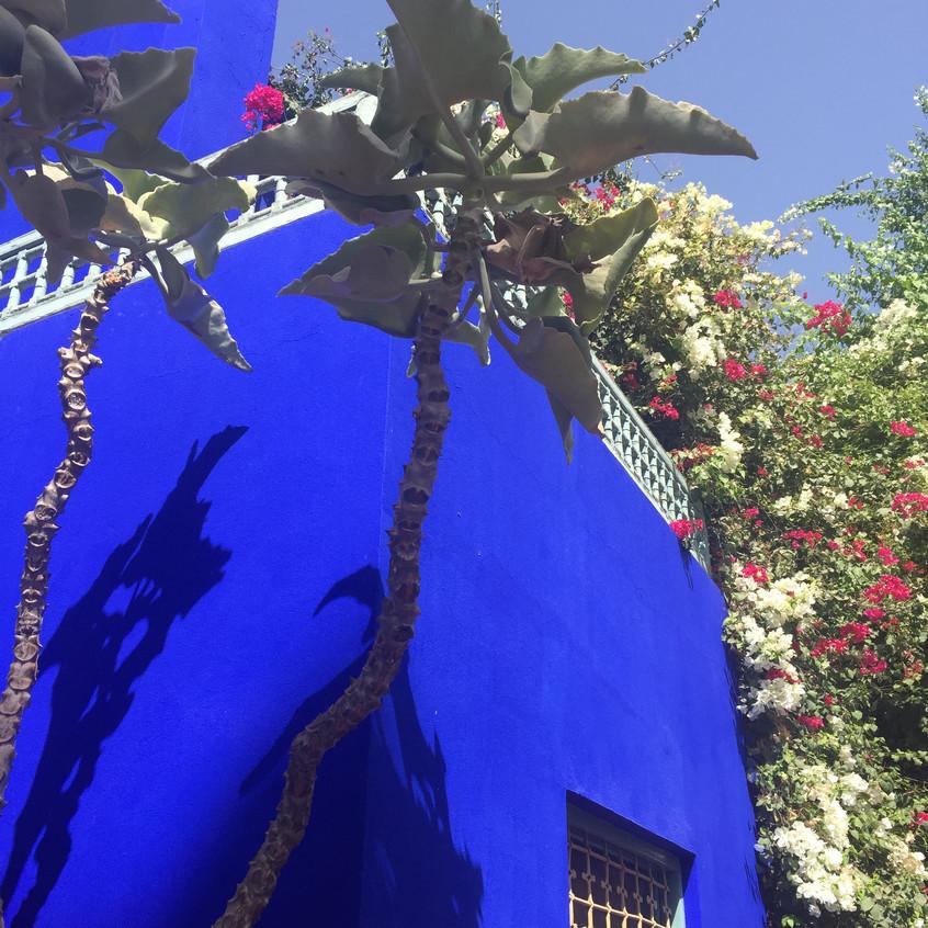 Le Jardin Majorelle, Marrakech, Maro