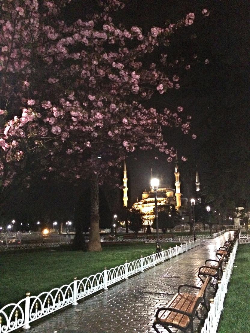 TURCHIA. Istanbul: percorsi e luci della notte turca