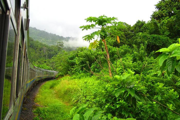 MALAYSIA. Dal Parco Nazionale di Taman Negara al Jungle Train: viaggio dentro il cuore della giungla