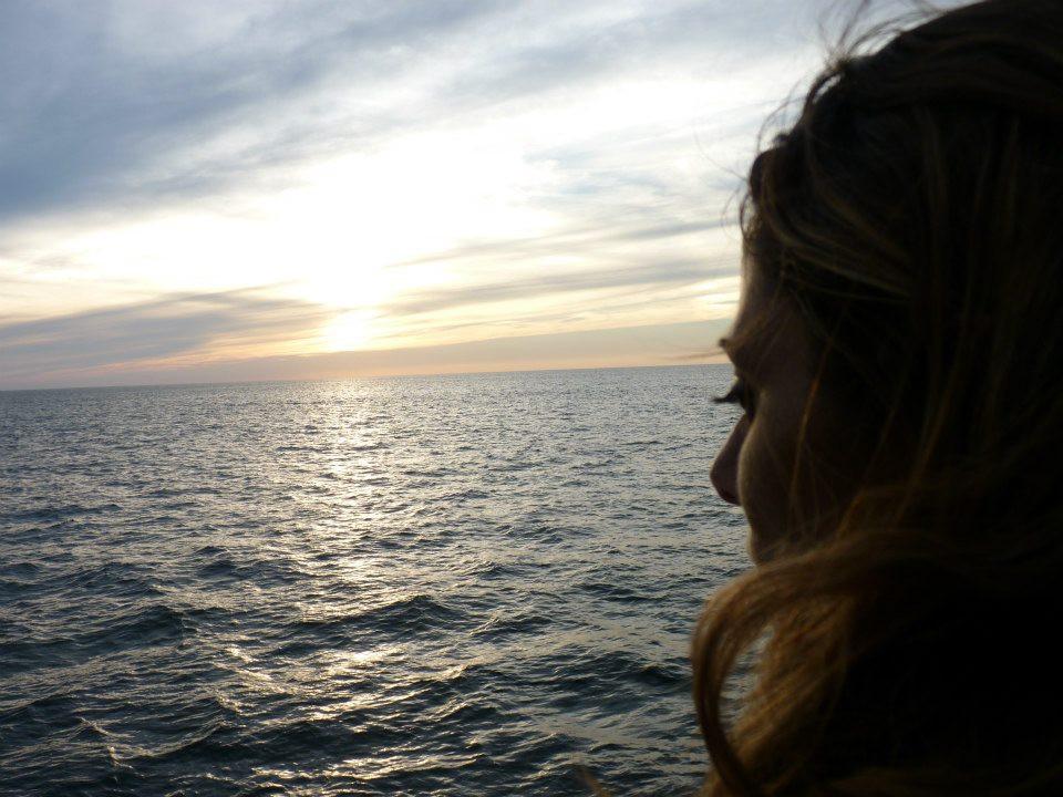 Balene a Cape Cod