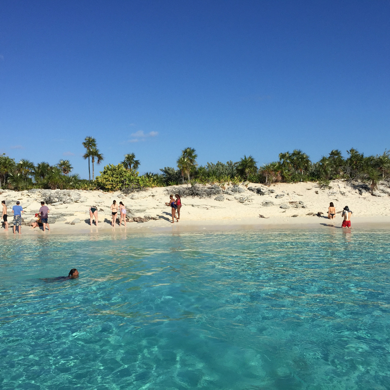 Bahamas, Exuma, Allen Cay