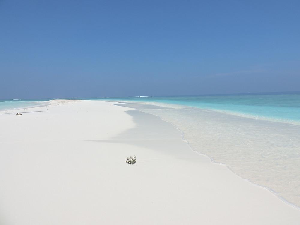 Maldive, no news no shoes, crociera alle maldive