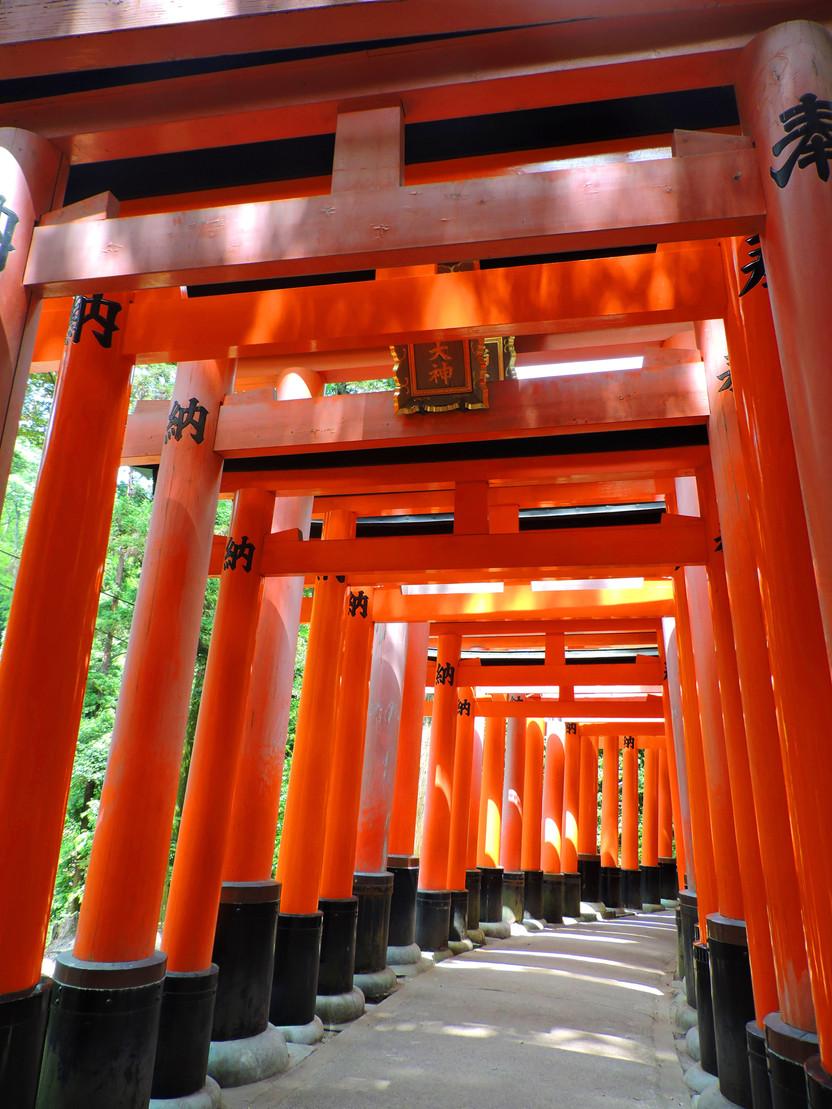 GIAPPONE. Il tunnel dei torii rossi del Fushimi Inari, il santuario più famoso di Kyoto