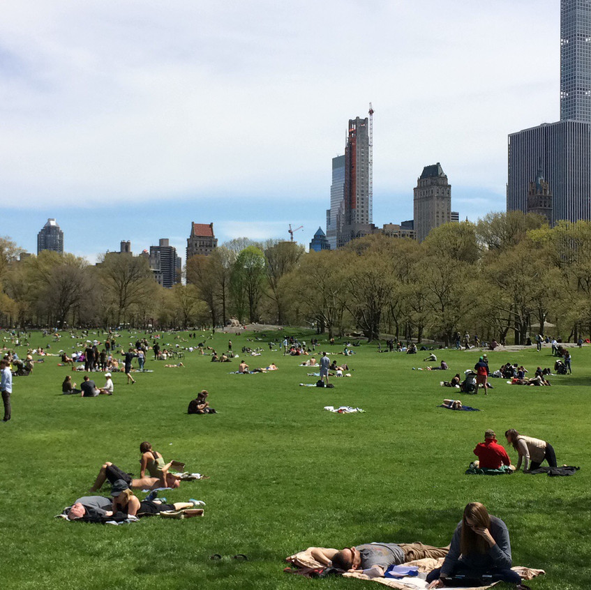 Pic-Nic a Central Park