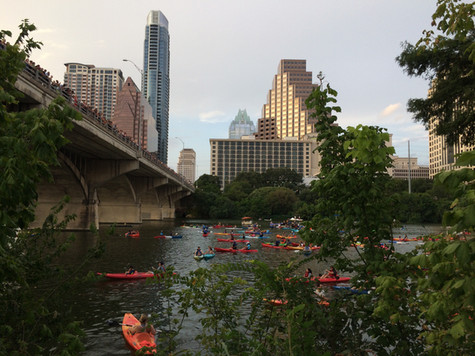 TEXAS. Austin: il Bat Watching, lo show più famoso degli Stati Uniti