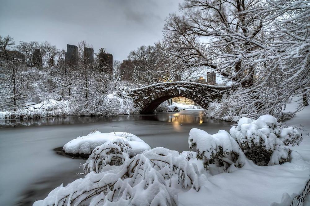 Vine Arhces Bridge, Central Park, New York