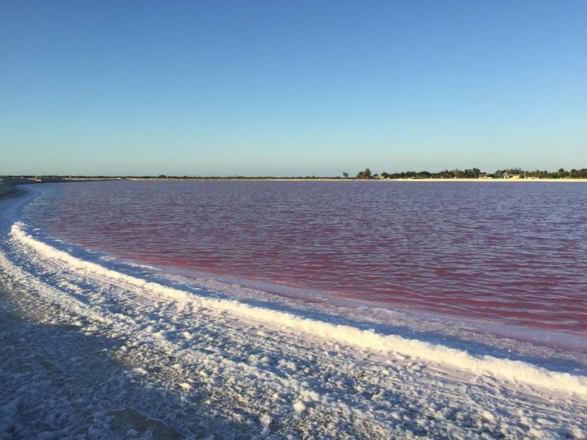 MESSICO. Las Coloradas: la laguna incantata, dipinta di rosa, tesoro dello Yucatan