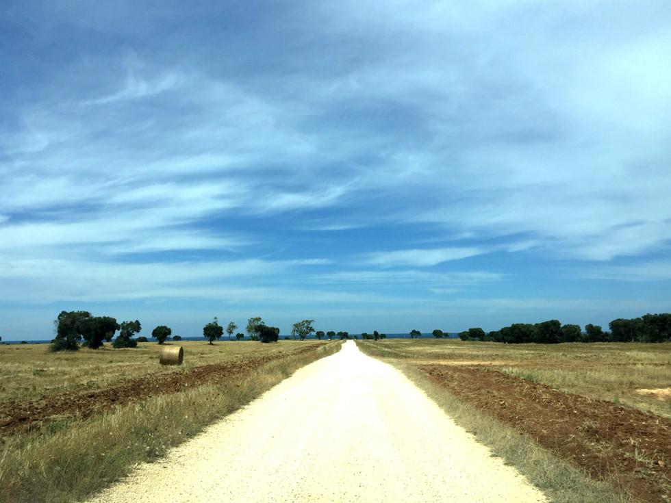 ITALIA. Da Monopoli a Gallipoli via Salento, e oltre: Puglia on the road, itinerario di 12 giorni