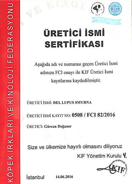 üretici-sertifika-519x720.jpeg