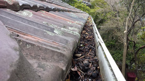 Before Gutter Clean | Hamiltons Roofing Melbourne