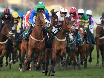 Beverley Race Trip