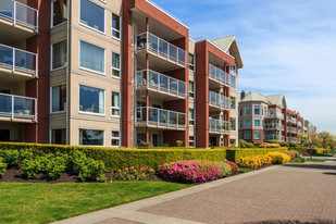 Multifamilies 101 - Where To Begin?