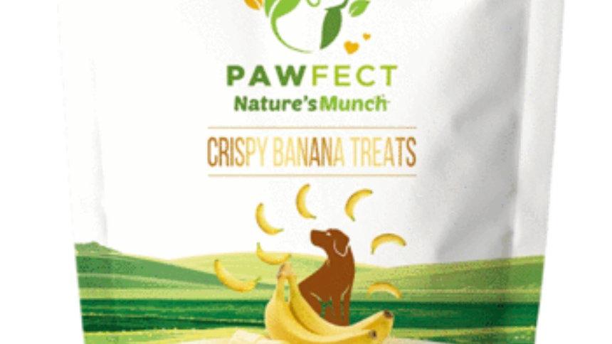 Crispy Banana Treats