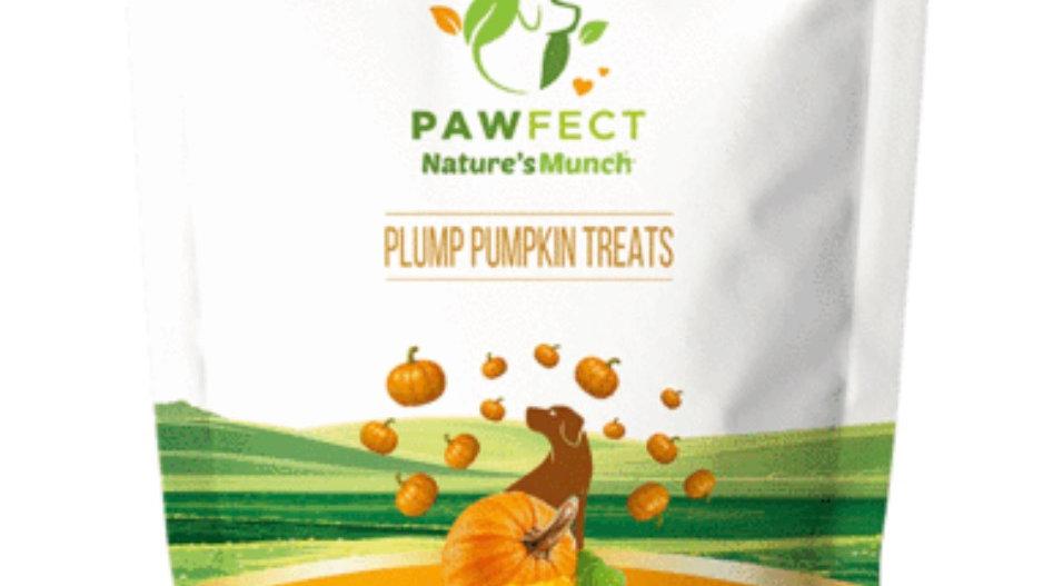 Freeze Dried Plump Pumpkin Treats
