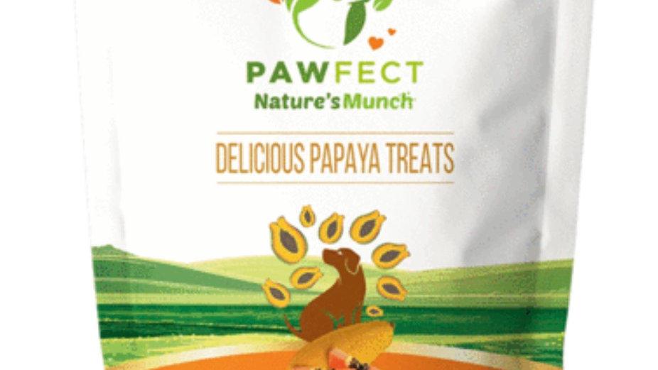 Freeze Dried Delicious Papaya Treats